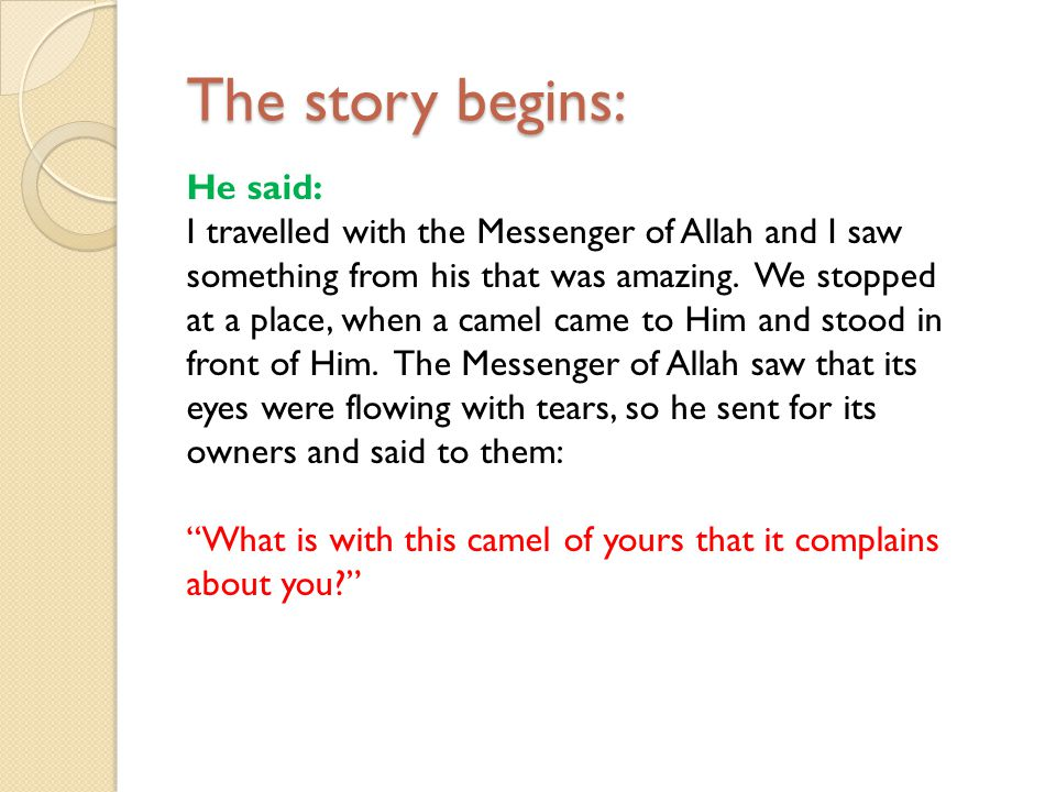 The story begins: