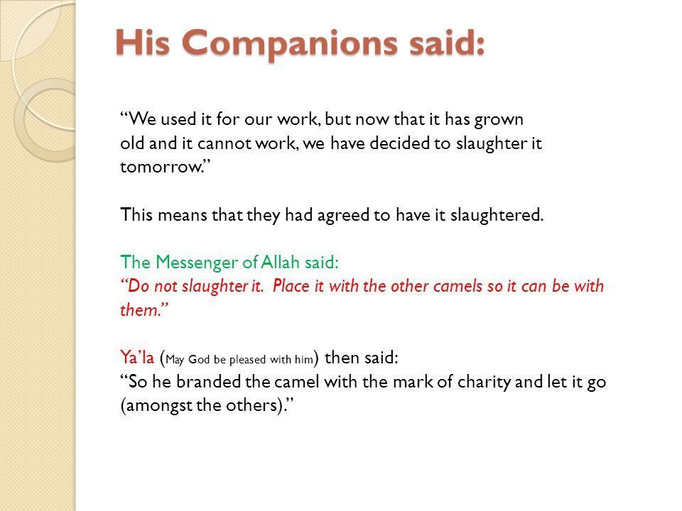 His Companions said: