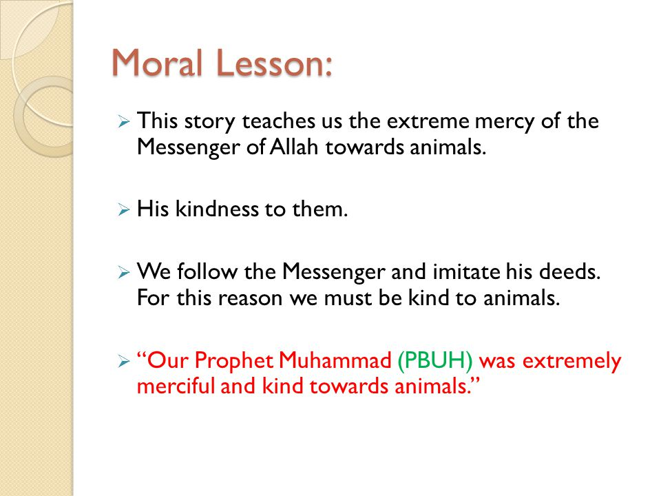 Moral Lesson: This story teaches us the extreme mercy of the Messenger of Allah towards animals. His kindness to them.