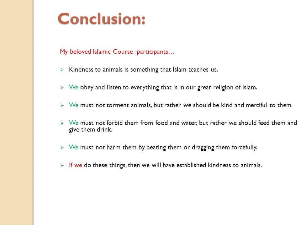 Conclusion: My beloved Islamic Course participants…