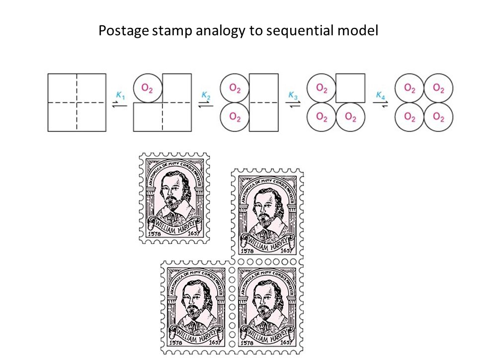 Postage stamp analogy to sequential model