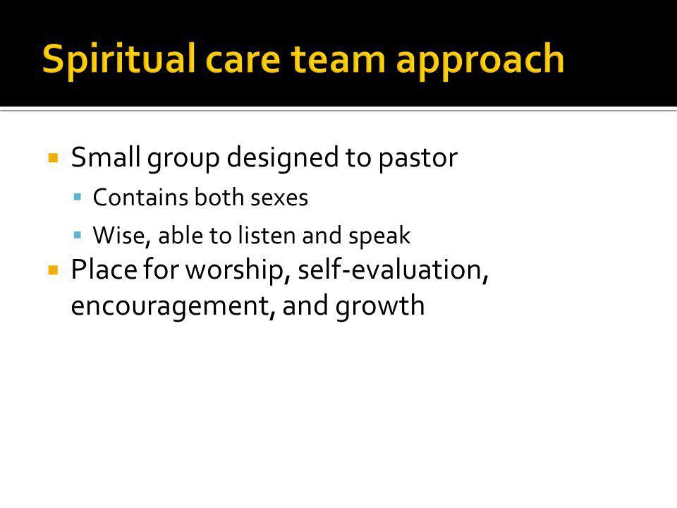 Spiritual care team approach