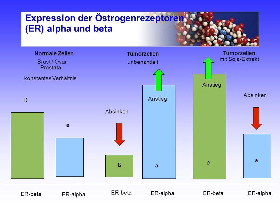 Expression der Östrogenrezeptoren (ER) alpha und beta