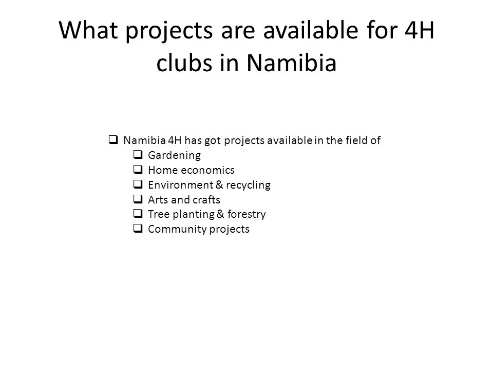 What projects are available for 4H clubs in Namibia