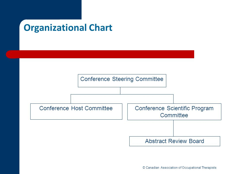 Organizational Chart Conference Steering Committee