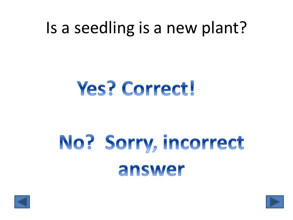 Is a seedling is a new plant