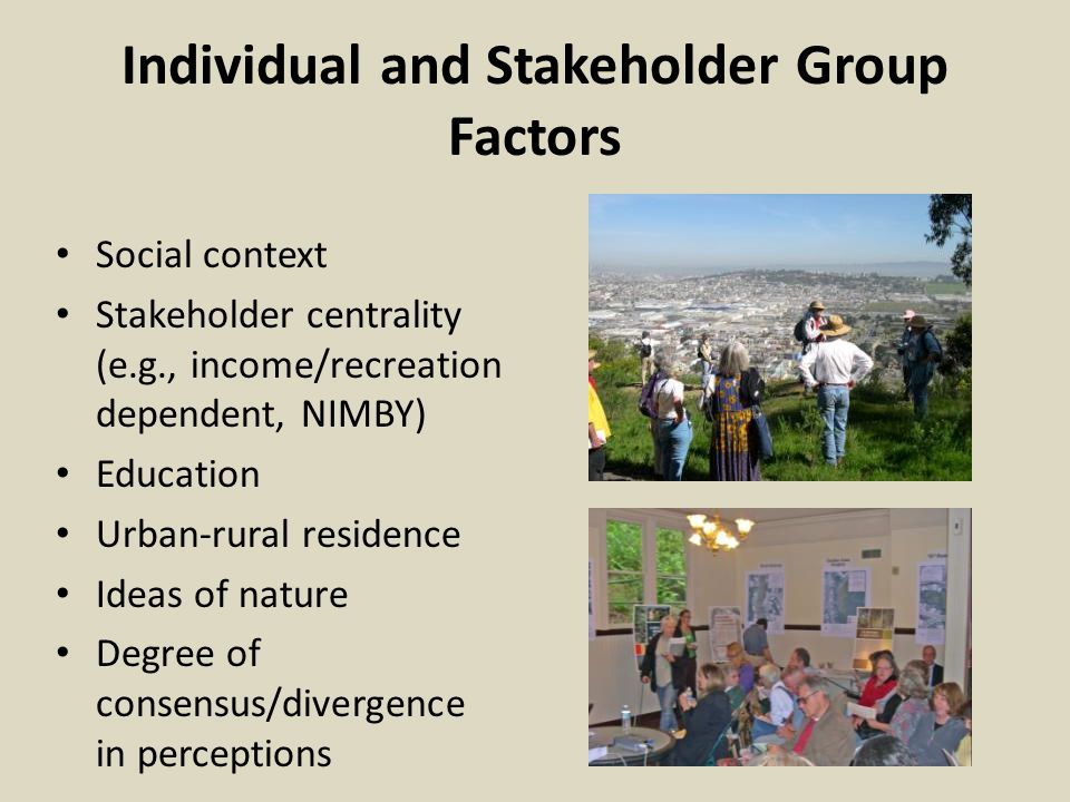Individual and Stakeholder Group Factors