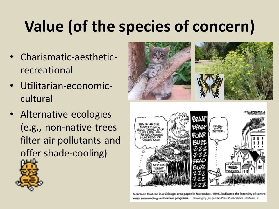 Value (of the species of concern)