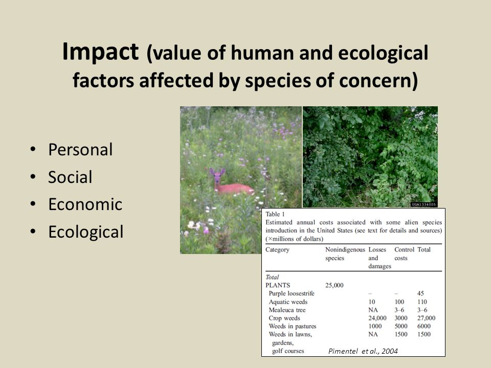Impact (value of human and ecological factors affected by species of concern)