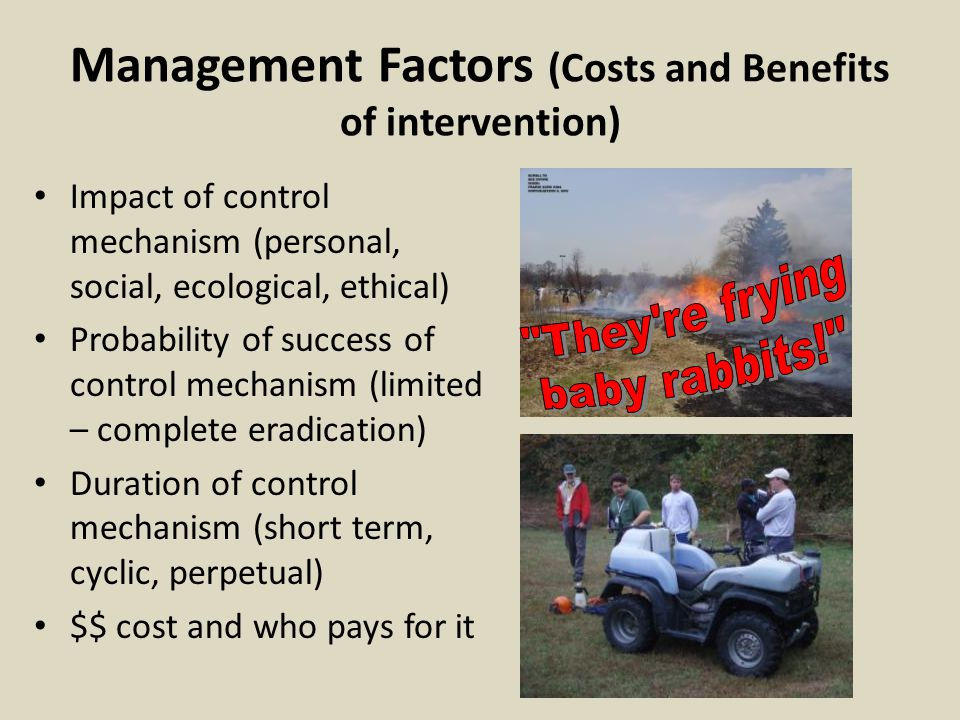 Management Factors (Costs and Benefits of intervention)