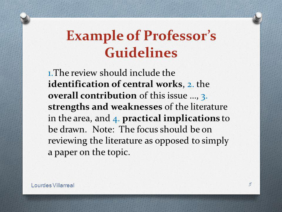 Example of Professor's Guidelines