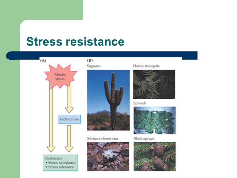 Stress resistance