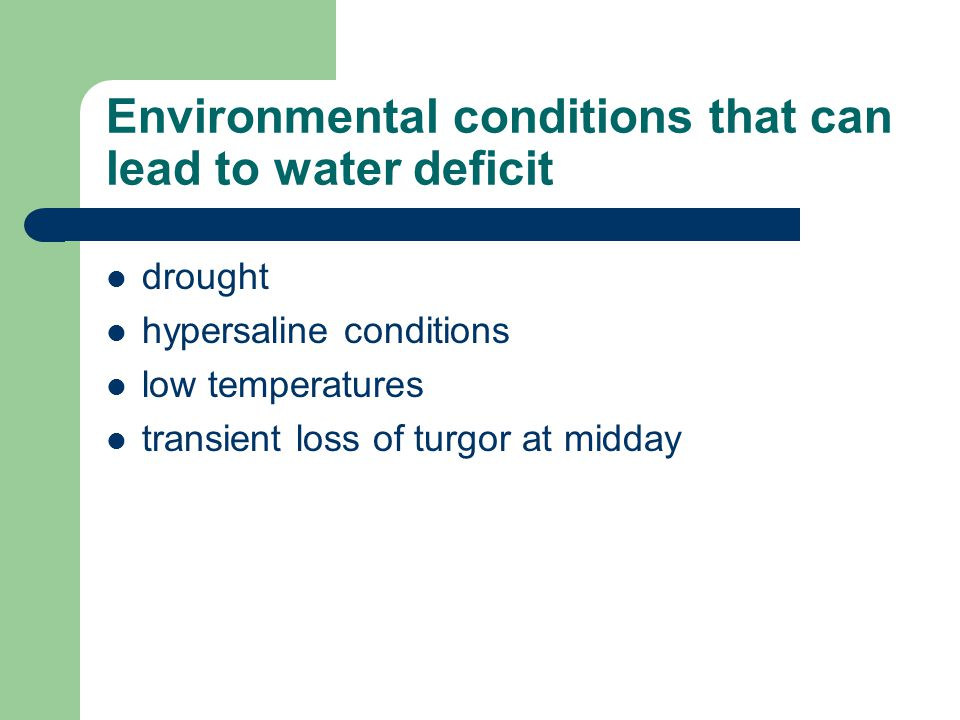 Environmental conditions that can lead to water deficit