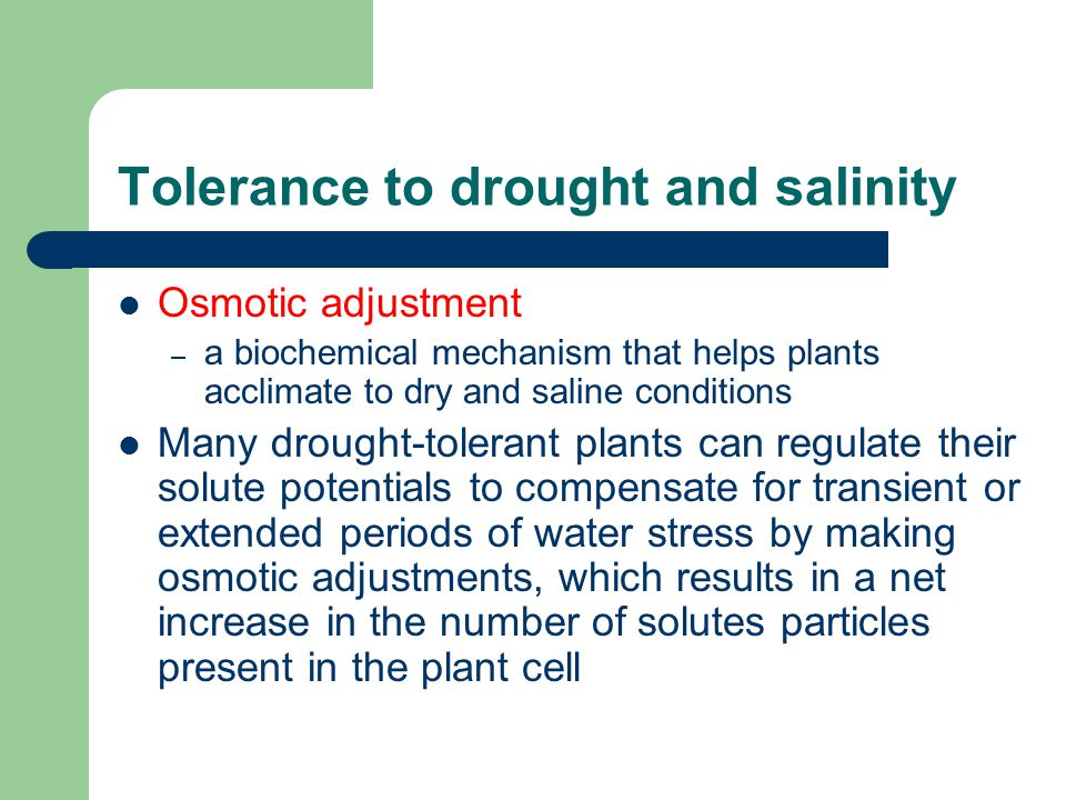 Tolerance to drought and salinity