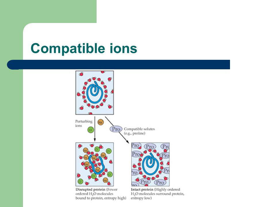 Compatible ions