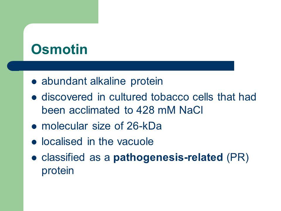 Osmotin abundant alkaline protein