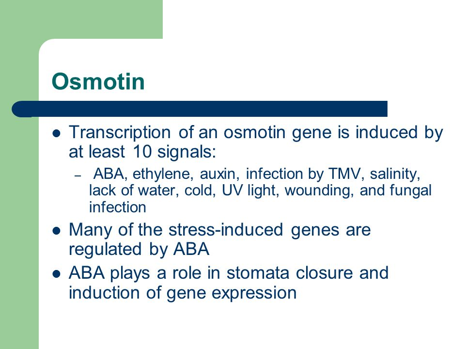 Osmotin Transcription of an osmotin gene is induced by at least 10 signals: