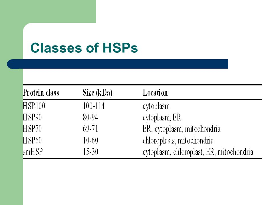 Classes of HSPs