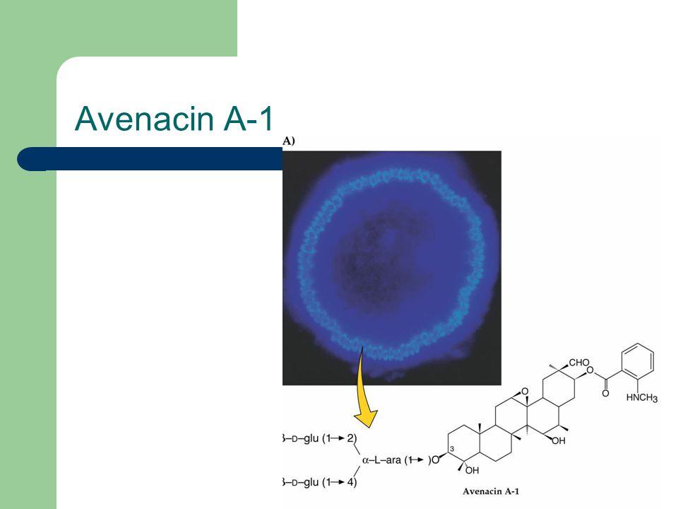 Avenacin A-1
