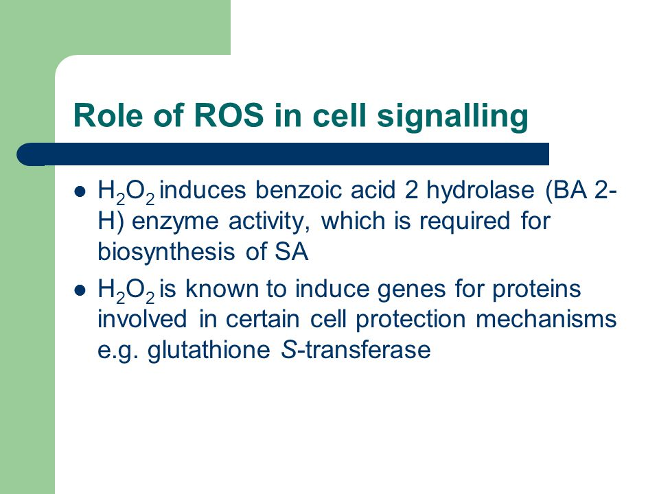 Role of ROS in cell signalling