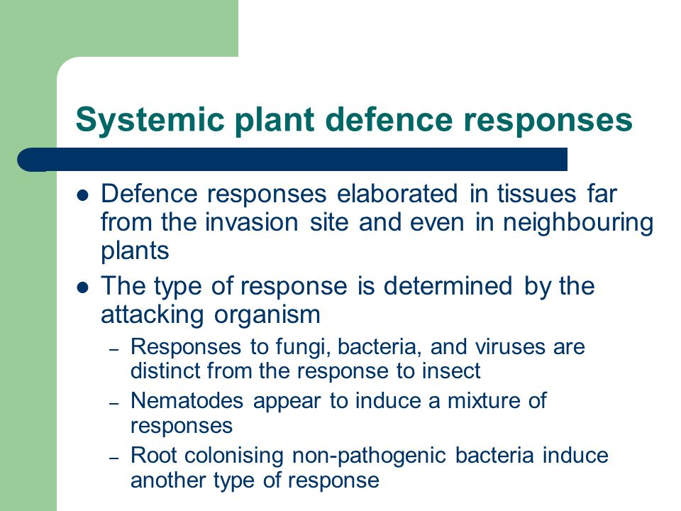 Systemic plant defence responses