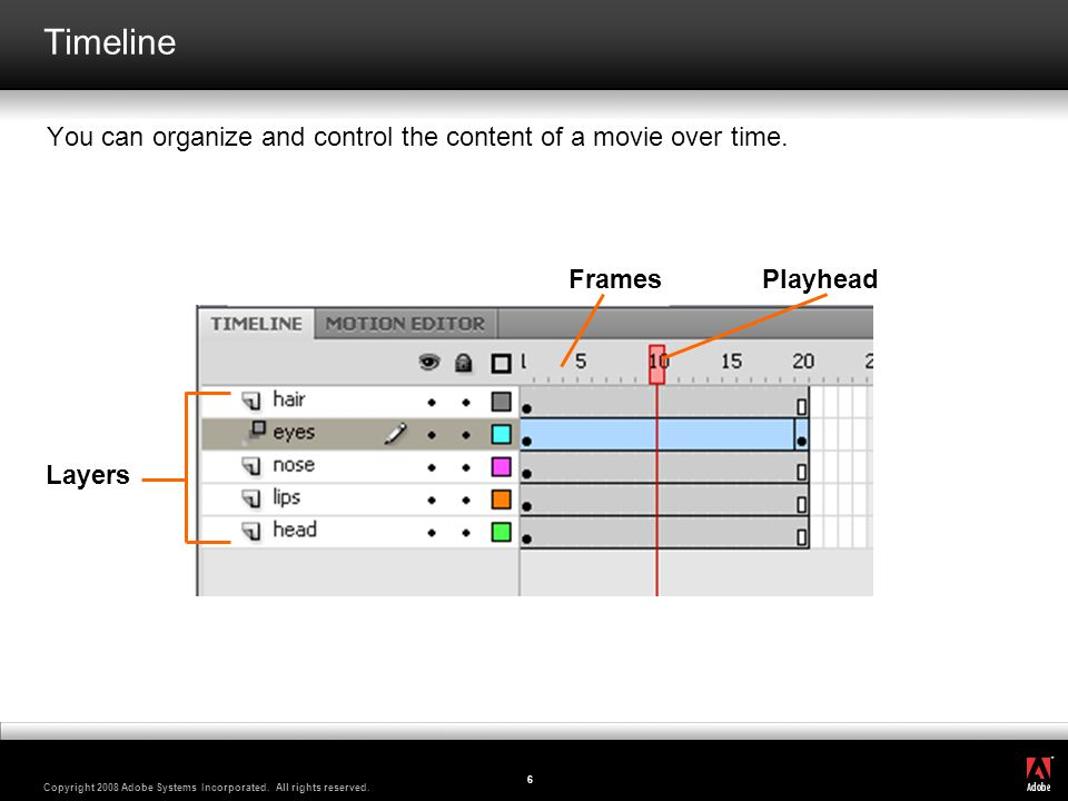 Timeline You can organize and control the content of a movie over time. Frames Playhead Layers