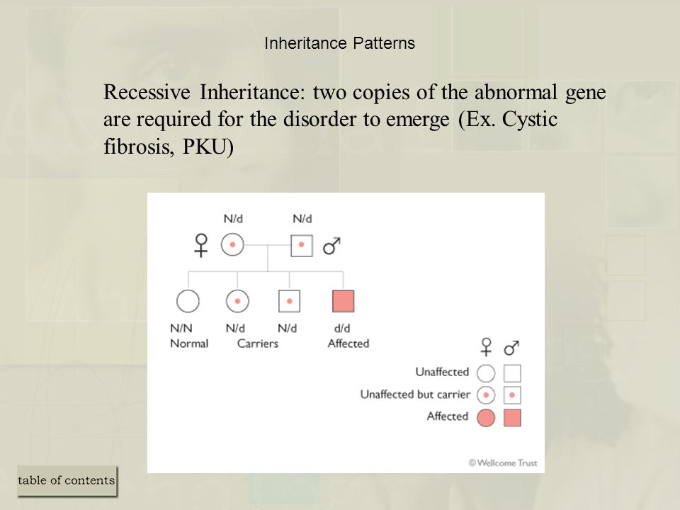 Inheritance Patterns Recessive Inheritance: two copies of the abnormal gene are required for the disorder to emerge (Ex.