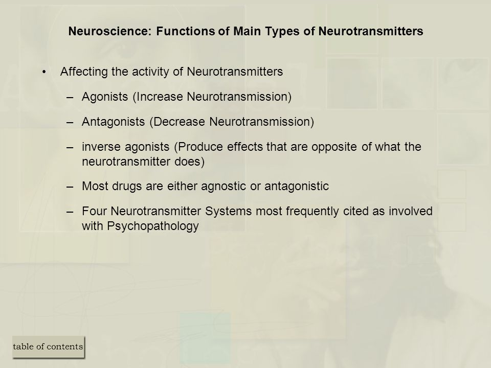 Neuroscience: Functions of Main Types of Neurotransmitters