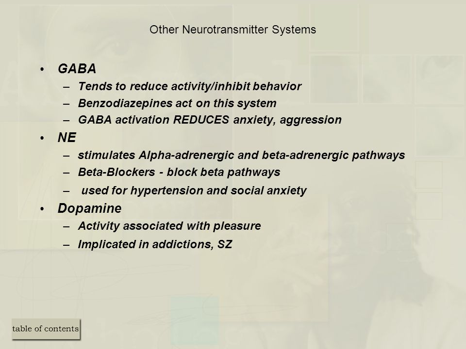 Other Neurotransmitter Systems