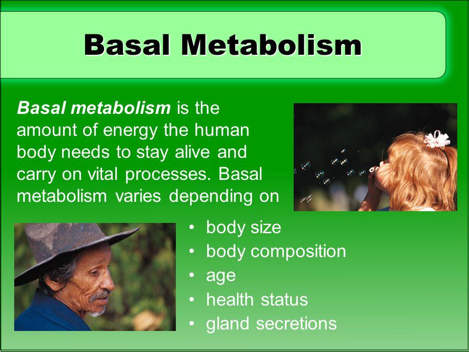 Basal Metabolism