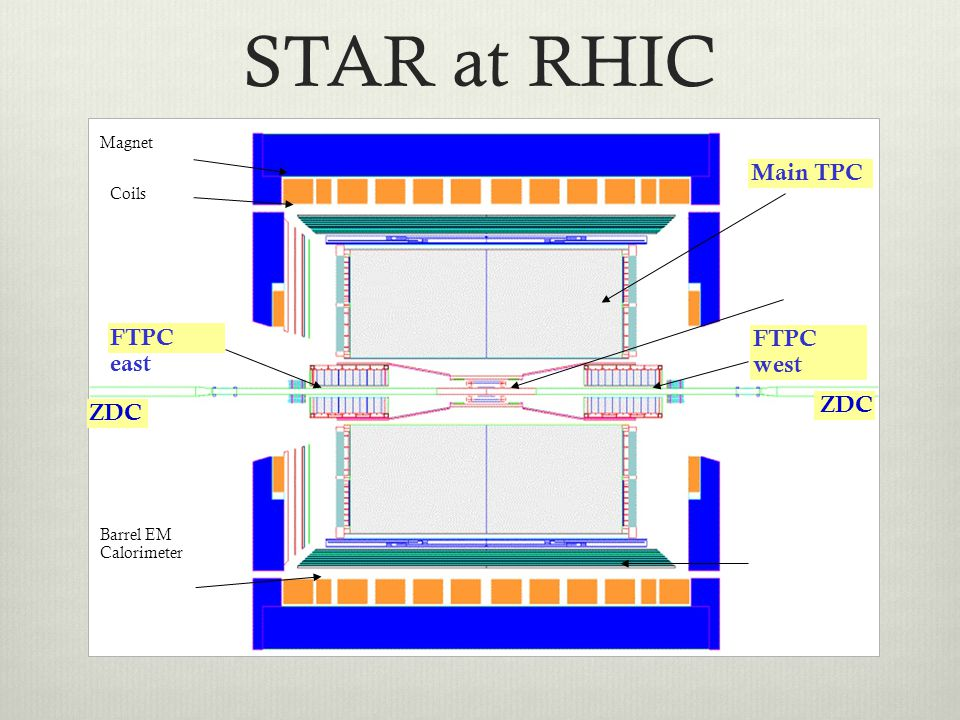 STAR at RHIC Main TPC FTPC east FTPC west ZDC Magnet Coils