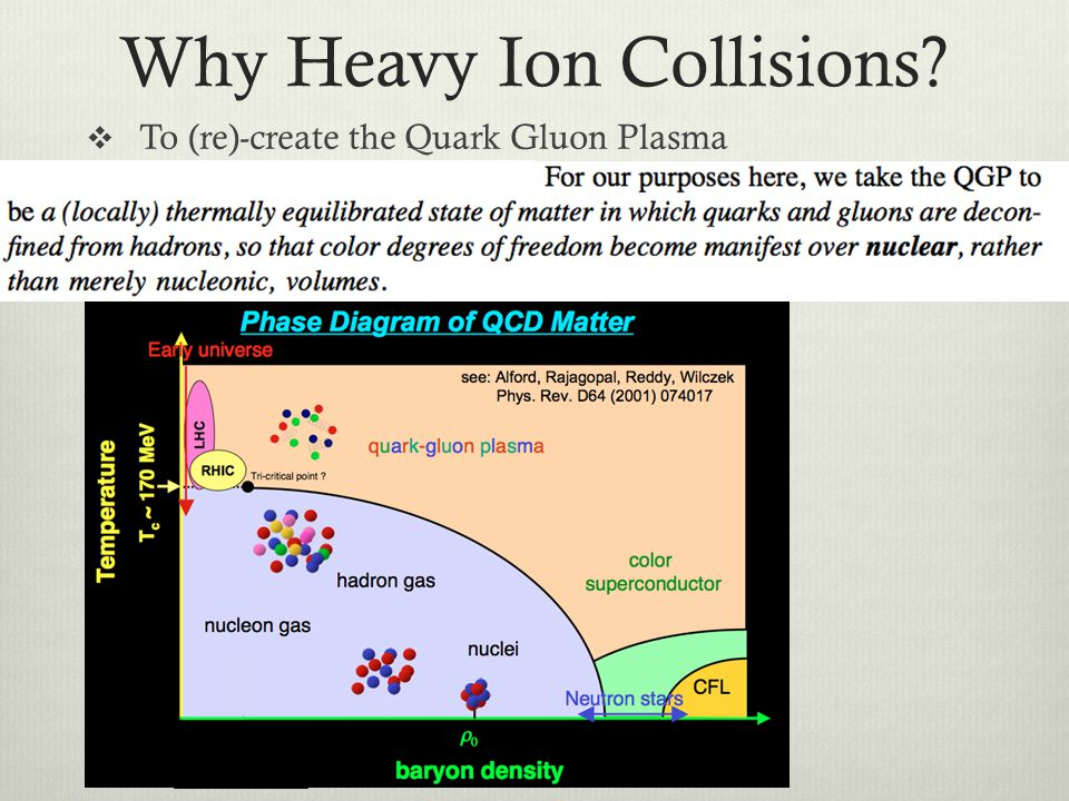 Why Heavy Ion Collisions