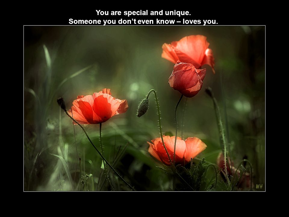 You are special and unique. Someone you don't even know – loves you.