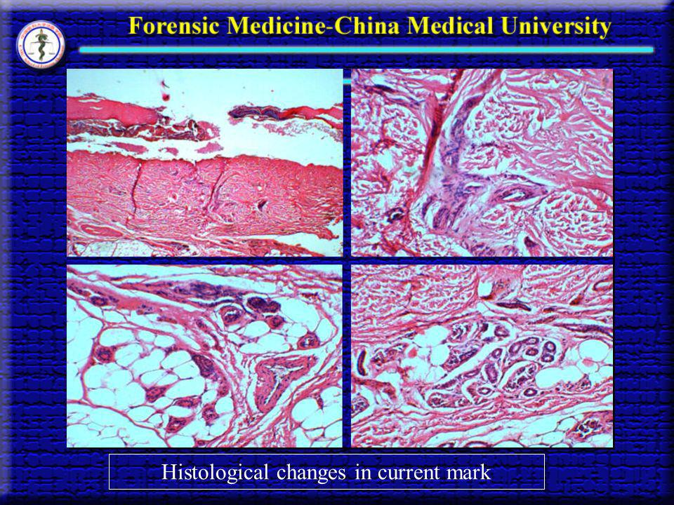 Histological changes in current mark