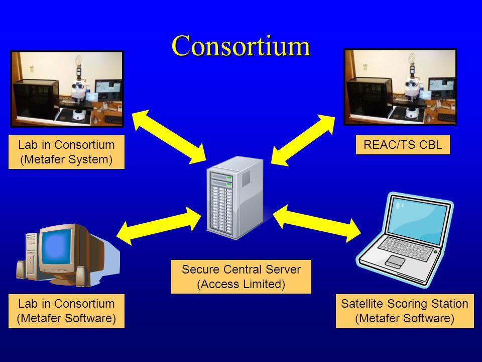 Consortium Lab in Consortium (Metafer System) REAC/TS CBL