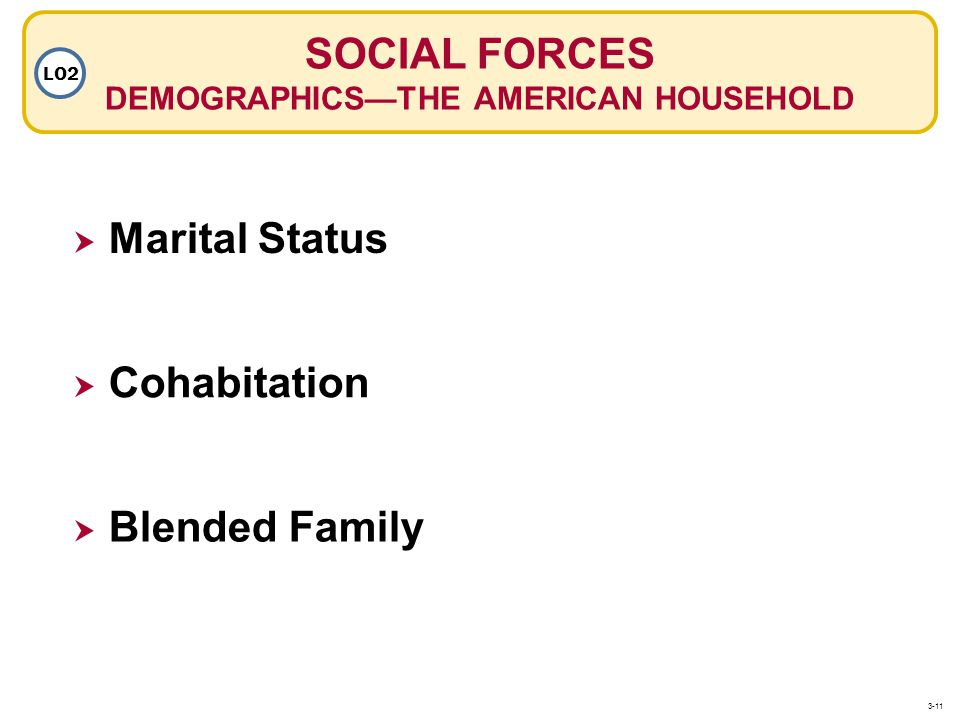 DEMOGRAPHICS—THE AMERICAN HOUSEHOLD