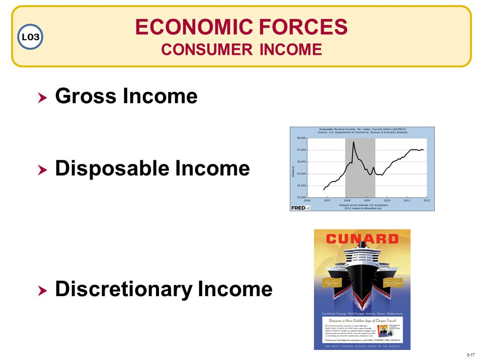 ECONOMIC FORCES Gross Income Disposable Income Discretionary Income
