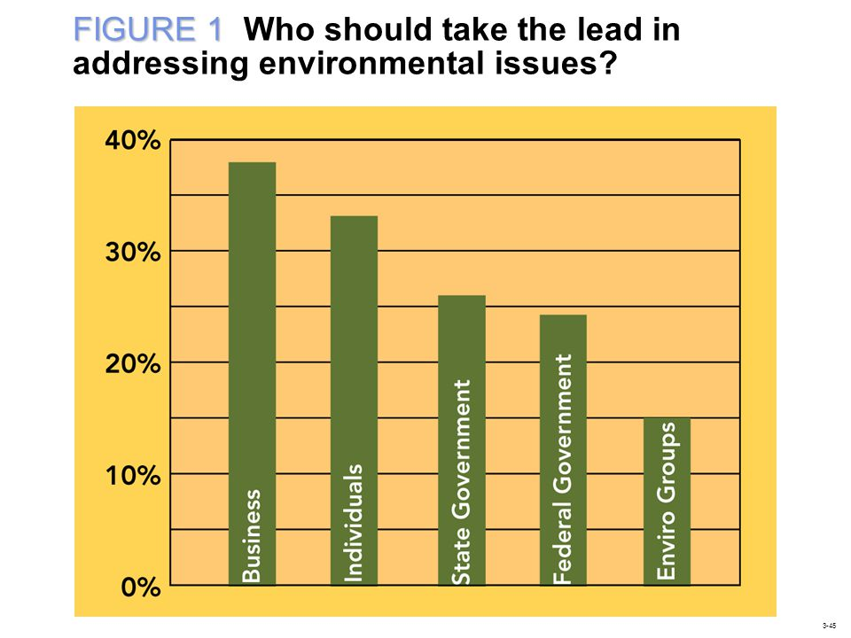 FIGURE 1 Who should take the lead in addressing environmental issues