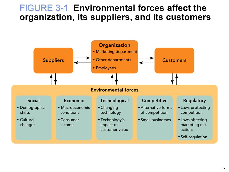 FIGURE 3-1 Environmental forces affect the organization, its suppliers, and its customers