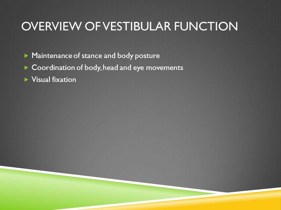 Overview of Vestibular Function