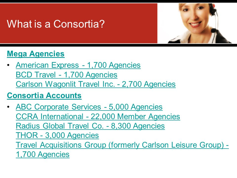What is a Consortia Mega Agencies