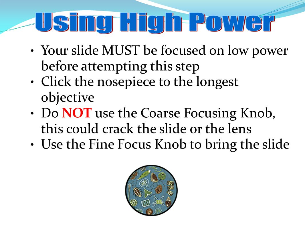 Your slide MUST be focused on low power before attempting this step