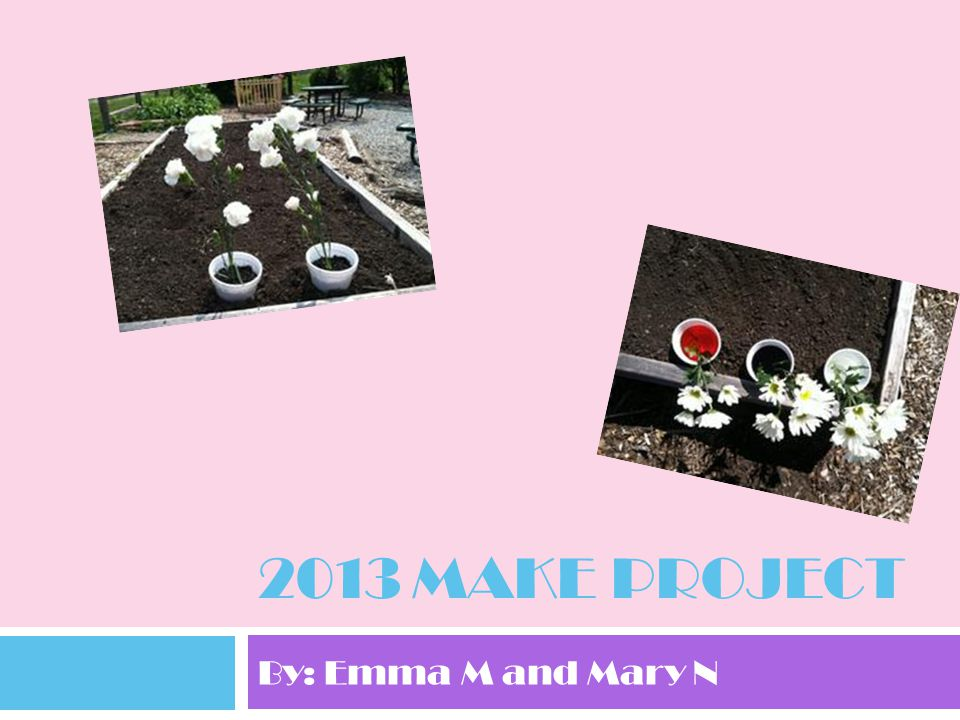 2013 Make Project By: Emma M and Mary N