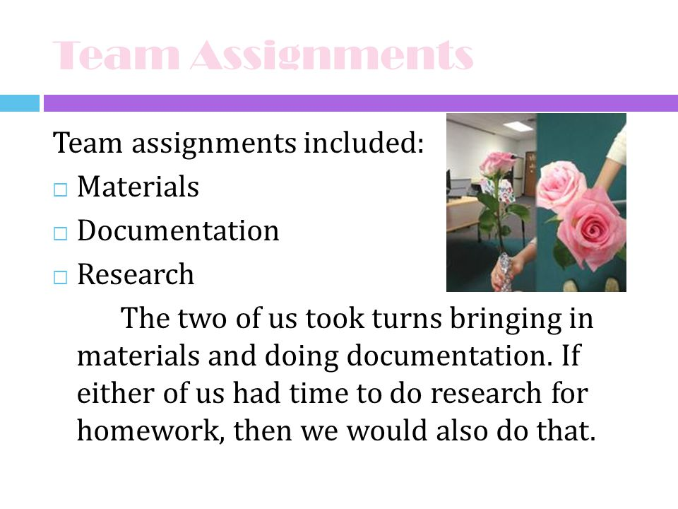 Team Assignments Team assignments included: Materials Documentation