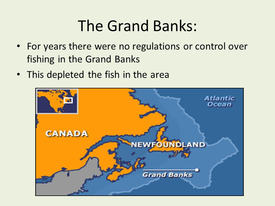 The Grand Banks: For years there were no regulations or control over fishing in the Grand Banks.