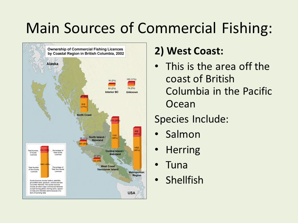 Main Sources of Commercial Fishing: