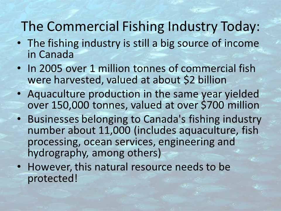 The Commercial Fishing Industry Today: