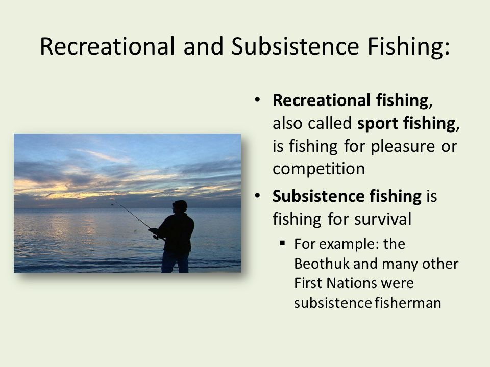 Recreational and Subsistence Fishing: