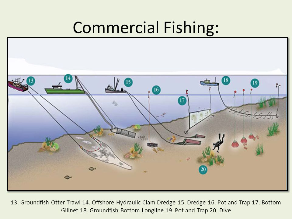 Commercial Fishing: