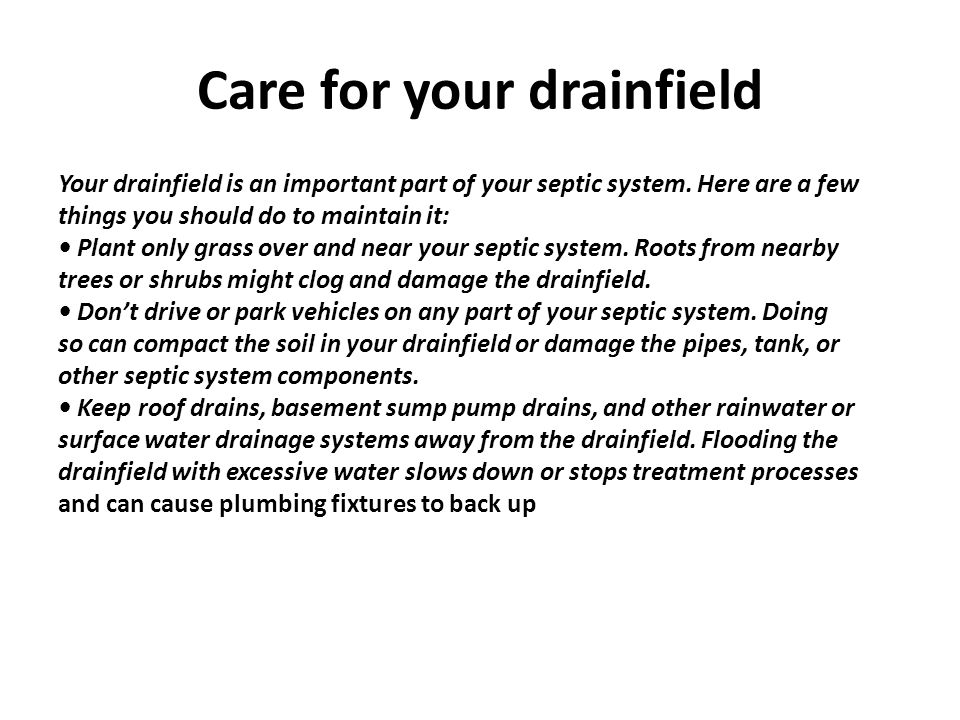 Care for your drainfield